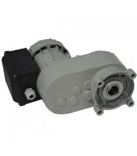 Motoreduktor 030523...