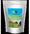 Biorumen - Mieszanka mineralna paszowa dla przeżuwaczy 125 g - VITTRA