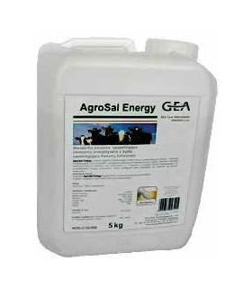 AgroSal Energy 20kg preparat energetyczny - GEA